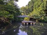 법정스님 출가로 유명한 미래사…돌다리·연못 등 포토스팟