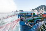 뜨거운 바다…수산업 대재앙 <중> 한반도 해역 생태계 바꿔
