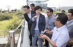 짧은 장마·기록적 폭염에 낙동강 녹조 확산