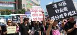 동물권단체, 성남 '모란시장' 개고기 판매업소 고발