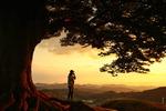 [포토에세이] 사랑나무 아래 내 사랑