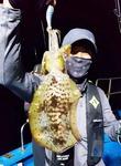 [조황] 통영서 야간 무늬오징어 마릿수 조과