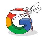 [도청도설] 구글의 '잠자리'