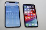 애플 아이폰XS·맥스·XR·워치4, 국내 출시 내달 26일 가능성...가격은?