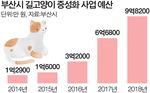 20억 들인 고양이 중성화 사업, 개체수 감소 효과검증 4년간 전무