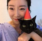 [펫 칼럼] 당신의 외로운 삶, 고양이가 보살펴 드립니다