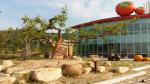 창원단감테마공원, 주말·휴일 4000명 이상 방문