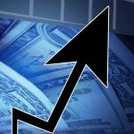 뉴프라이드, 美 대마 시장 공략 성공 '주가 급등 '