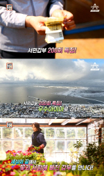 '서민갑부' 우수아이아 비베로 꼬레아노 화훼농장…루삐노 등 '꽃 갑부'