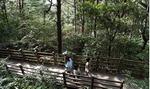 부산여행 탐구생활 <4> 숨은 숲 명소