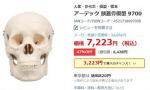 일본 학교에 사용된 교육용 해골, 실제 사람 유해…'주인은 누구?'