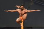 인도 전통 스포츠, 장대 위 균형잡기
