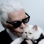 칼 라거펠트와 결혼한 고양이 슈페트, 천문학적 유산 상속?