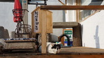 부산여행 탐구생활 <13> 청사포 고양이 마을