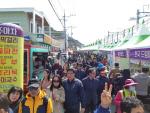양산 원동 매화축제 성황리에 끝나