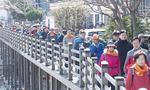 부산 시민중심 보행도시 '큰 걸음' 뗐다
