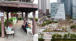부산을 적정도시로 <4> 도시 현실 진단- 공원