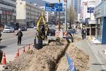 부산 중앙대로 BRT 건설에 뽑혀 나가는 가로수