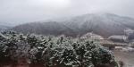 다시 찾아온 겨울…'눈 펑펑'