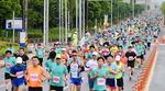 2019 부산하프마라톤대회