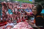 중국 아프리카 돼지열병 100건 넘겨… 국내 사례 살펴보니