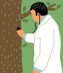 [도청도설] 나무 의사