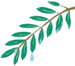 [이 한편의 시조] 물방울 나무 /옥유림