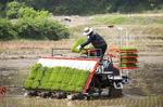 자율주행 이앙기, 모바일 농장관리…과학이 농사짓다