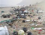 해수부 '청정바다 만들기 캠페인', 거북 몸속 낚싯줄·그물 감긴 고래…해양쓰레기에 바다가 병든다