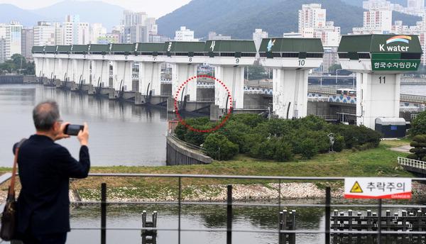 낙동강 하굿둑 32년 만에 처음 열렸다