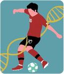 [도청도설] 축구 DNA