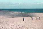 [아침의 갤러리] 여름, 해변에서-장보윤 作