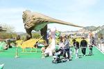 [바캉스 특집-고성군] 고분서 인생샷 찍고 공룡나라 시간여행…'9景'거리 너무 많네