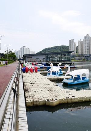 수영강 수상레저 시설 내달 재개장…곳곳 암초