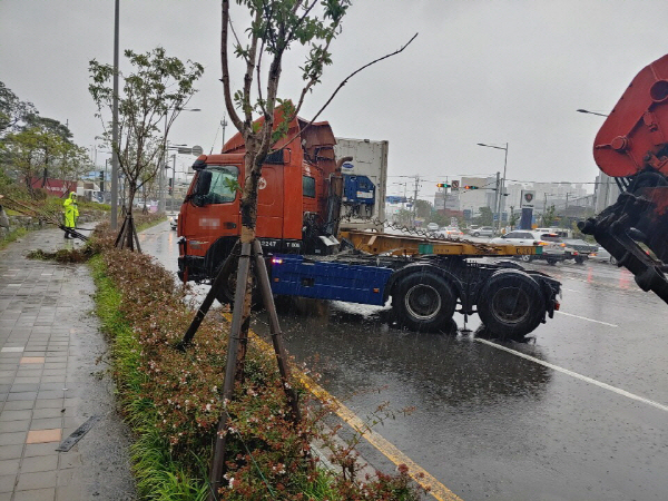 태풍 지나간 부산 최대 118㎜ 비, 오후부터 다시 무더위
