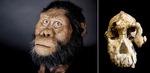 380만 년 전 인류의 조상 이렇게 생겼어요