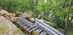 태풍 '링링'으로 천연기념물 나무 부러져…전국 3명 사망