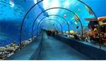 통영해저터널에 수중 가상공간 꾸민다