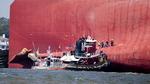 일본 선박 접근 문제 있었나…골든레이호 사고원인 추측 난무