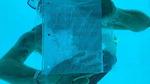 비극이 된 청혼…수중 프러포즈 하다 익사