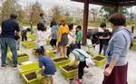 [사회복지관 지역맞춤 사업] 옥상 텃밭 가꾸며 쑥쑥 큰 '꼬마농부'들
