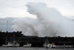 태풍 '하기비스' 일본 피해 상당해…19명 사망·실종
