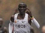 마라톤 킵초케, 국제육상 올해의 선수 후보