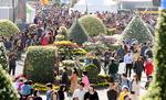 마산국화축제 꽃송이만큼 붐빈 나들이 인파