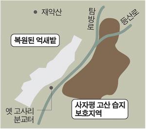 재약산 복원사업 10년…'억새 물결' 옛 모습 찾았다