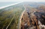 호주 최악 산불에 비상사태