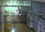 신생아실 내 CCTV 의무화 추진