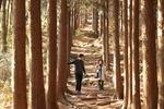 걷고 싶은 길 <82> 고성 '갈모봉 산림욕장'