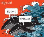 [서상균 그림창] 격랑 속 고래