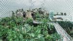 국내 최대 돔형 온실 '거제 정글돔' 17일 오픈